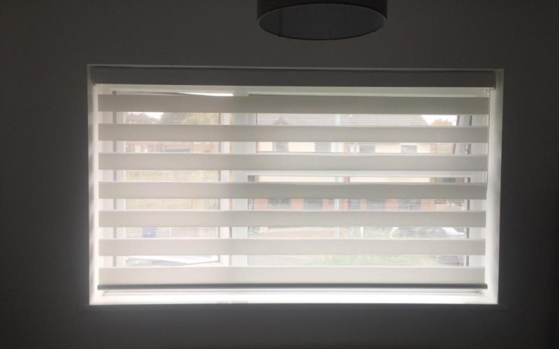 White day & night blinds